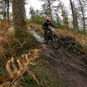 Photo of ? at Grizedale Forest