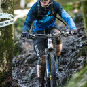 Photo of Edward RILEY at Grizedale Forest