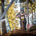 Photo of Timo HAHN at Innsbruck