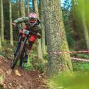 Photo of Dan DIXON (sen) at Ae Forest