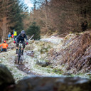 Photo of Toni FRYER at Ae Forest