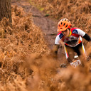 Photo of an untagged rider at Crowthorne Wood