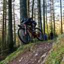 Photo of Brad ILLINGWORTH at Ae Forest