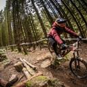 Photo of Jordan COLCLOUGH at BikePark Wales