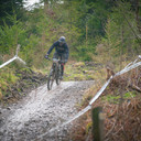 Photo of Ben STOKES at Grizedale Forest