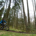 Photo of Joe TAYLOR (mas1) at Grizedale Forest