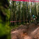 Photo of James FLETCHER at BikePark Wales