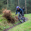 Photo of Donna WARING at Grizedale Forest