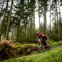Photo of Richard PEARCE at Grizedale Forest