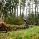 Photo of Freddie THOMSON at Grizedale Forest