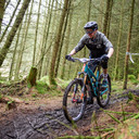 Photo of Daniel HOGARTH at Grizedale Forest