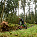 Photo of Ewan CALTON-WHITAKER at Grizedale Forest