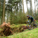 Photo of Osian GRIFFITH at Grizedale Forest