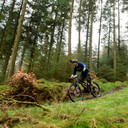 Photo of Aaron NICHOLAS at Grizedale Forest