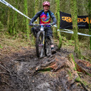 Photo of Tim DIXON at Grizedale Forest