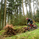 Photo of Shay HAYTON at Grizedale Forest