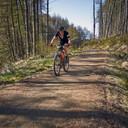 Photo of Anna MCLEOD at Kielder Forest