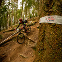 Photo of Philip HOLWELL at Dalby Forest