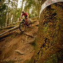 Photo of Reuben ORR at Dalby Forest