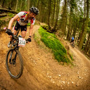 Photo of Mark HARDWICKE at Dalby Forest