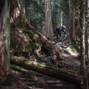 Photo of Leif EMBERTSON at Bellingham