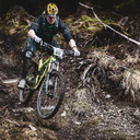 Photo of Martyn DOLAN at Ballinastoe Woods, Co. Wicklow