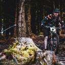 Photo of Paul DONNAN at Ballinastoe Woods, Co. Wicklow