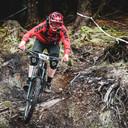 Photo of Alan KAVANAGH at Ballinastoe Woods, Co. Wicklow