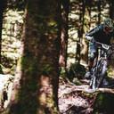 Photo of Tommy HUTCHINSON at Ballinastoe Woods