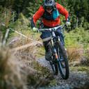 Photo of Seamus CASH at Ballinastoe Woods