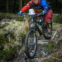Photo of Mario BUENO at Ballinastoe Woods