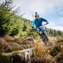 Photo of Karl RYAN at Ballinastoe Woods, Co. Wicklow
