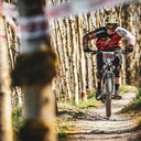 Photo of Diarmuid MCNAMARA at Bike Park Ireland