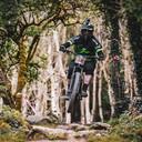 Photo of Domenic SISINNI at Bike Park Ireland