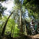 Photo of Alex STEWARD at Forest of Dean