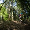 Photo of Tom POWELL (jun) at Forest of Dean