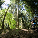 Photo of Dave WALKER-BLAIR at Forest of Dean