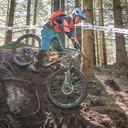 Photo of Rider 295 at Graythwaite