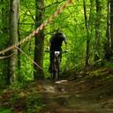 Photo of David CAMUS at Chopwell Woods