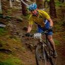 Photo of Steve NICHOLSON at Glentress