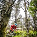 Photo of Nigel GLYNN at Mt Leinster, Co. Wexford