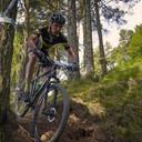 Photo of Dan SMALL at Glentress