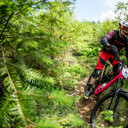 Photo of Jason GAIGER at Dyfi Forest