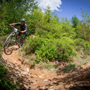 Photo of Matthew DULEY at Dyfi Forest