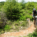 Photo of Daniel BEVIS at Dyfi Forest