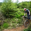 Photo of James ALLEN (sen) at Dyfi Forest
