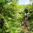Photo of Simon HARRIS at Dyfi Forest