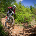 Photo of Joe HAYWARD at Dyfi Forest