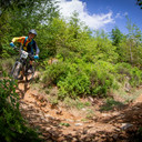 Photo of Iestyn WILLIAMS at Dyfi Forest