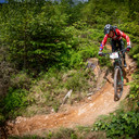 Photo of Elis WILLIAMS at Dyfi Forest